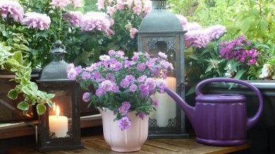 House Painter - ProTEK Painters - Newton, MA - Curb appeal tip - flower garden and pots and outdoor lighting