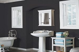 Black walls look sophisticated with white accents