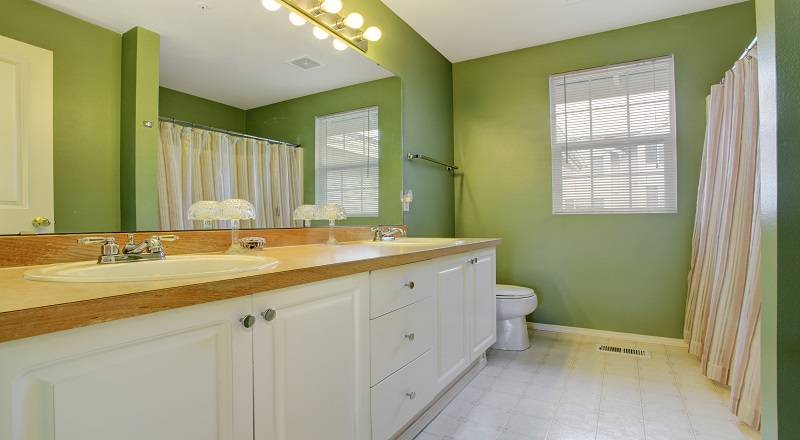Interior Paint Problems - Moisture in Bathroom - ProTEK Painters Newton MA 800x440
