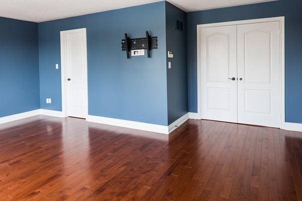 Dark Blue Walls, White Doors and Trim - Interior Painters ProTEK Painters Newton, MA